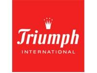 Client_Logos_0002_Triumph.jpg